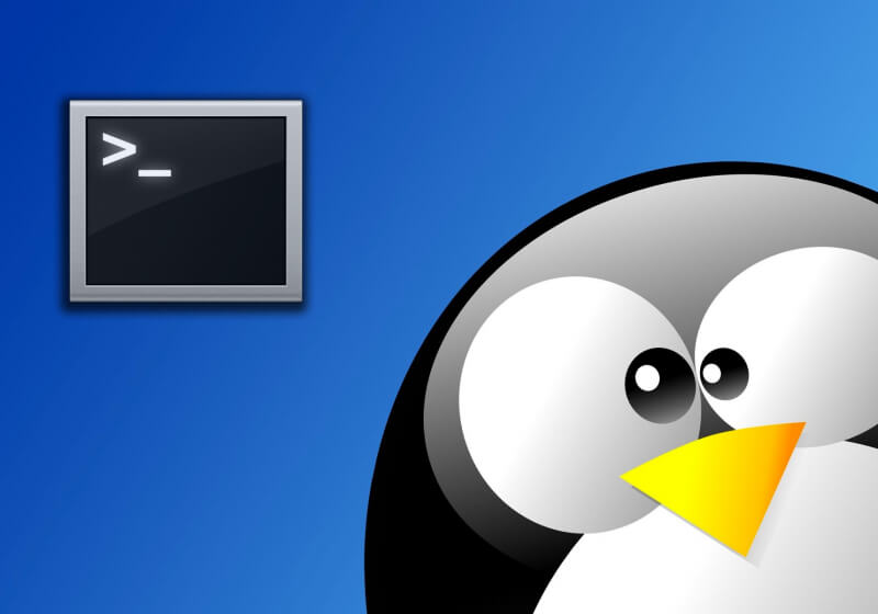 A Beginner's Guide to the Linux Command Line