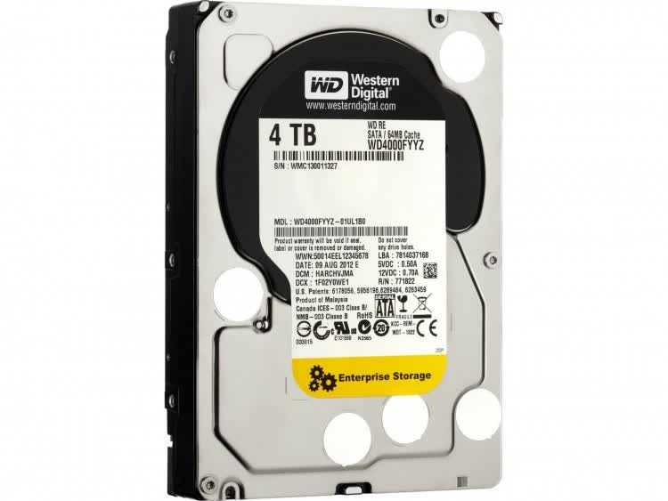 Western Digital SE Enterprise