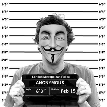 anonymous, ddos, hacking, white house, distributed denial of service, we the people
