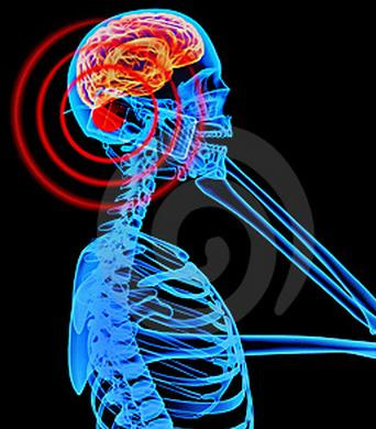 fcc, government, cancer, safety, standards, regulations, studies, guidelines, health, radiation, communications, fda, tumors, microwaves, electromagnetic waves