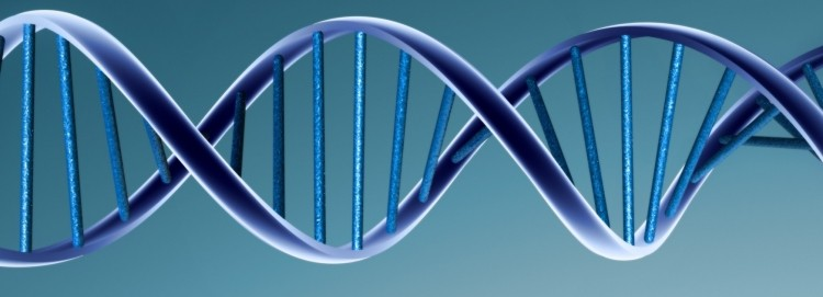 DNA can no longer be patented, says US Supreme Court