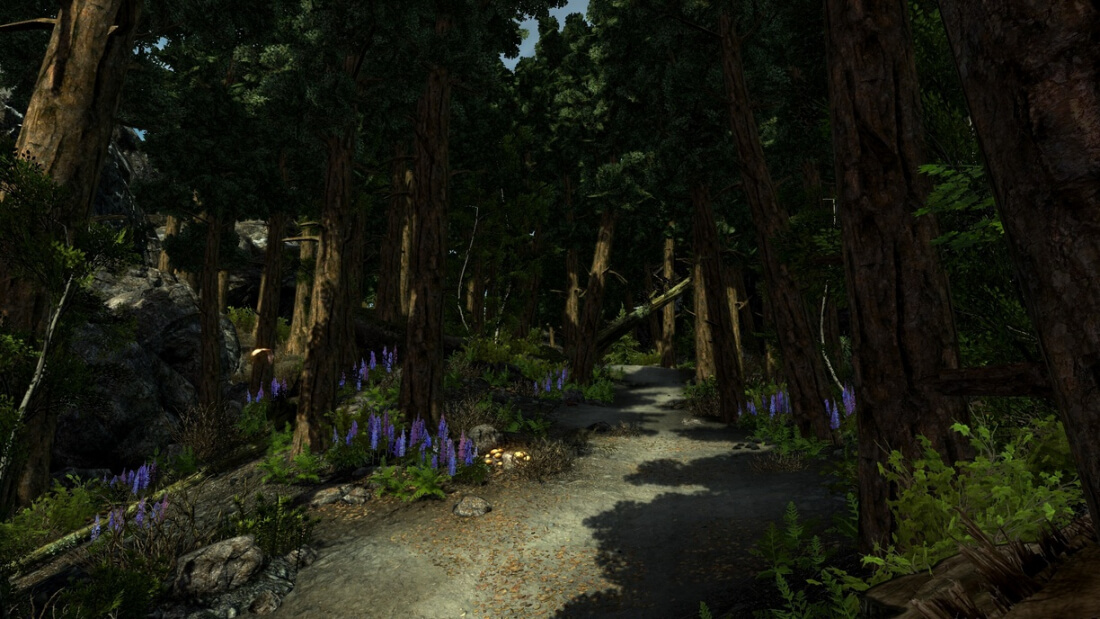 Skyrim total conversion mod Enderal to arrive next month