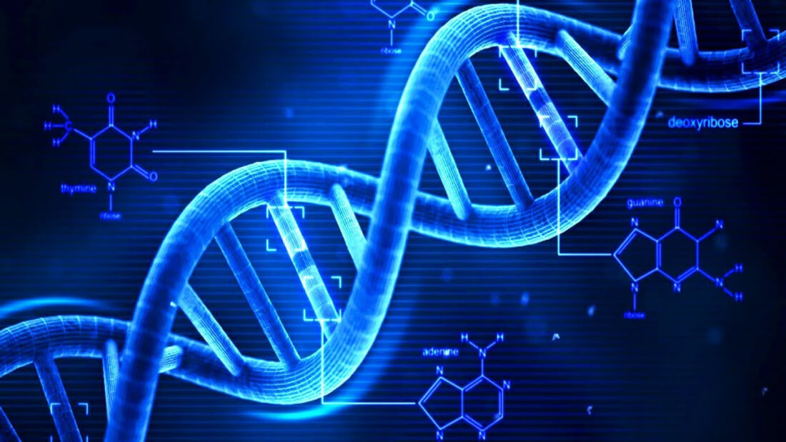 Biohackers sequence computer malware right into the strands of DNA