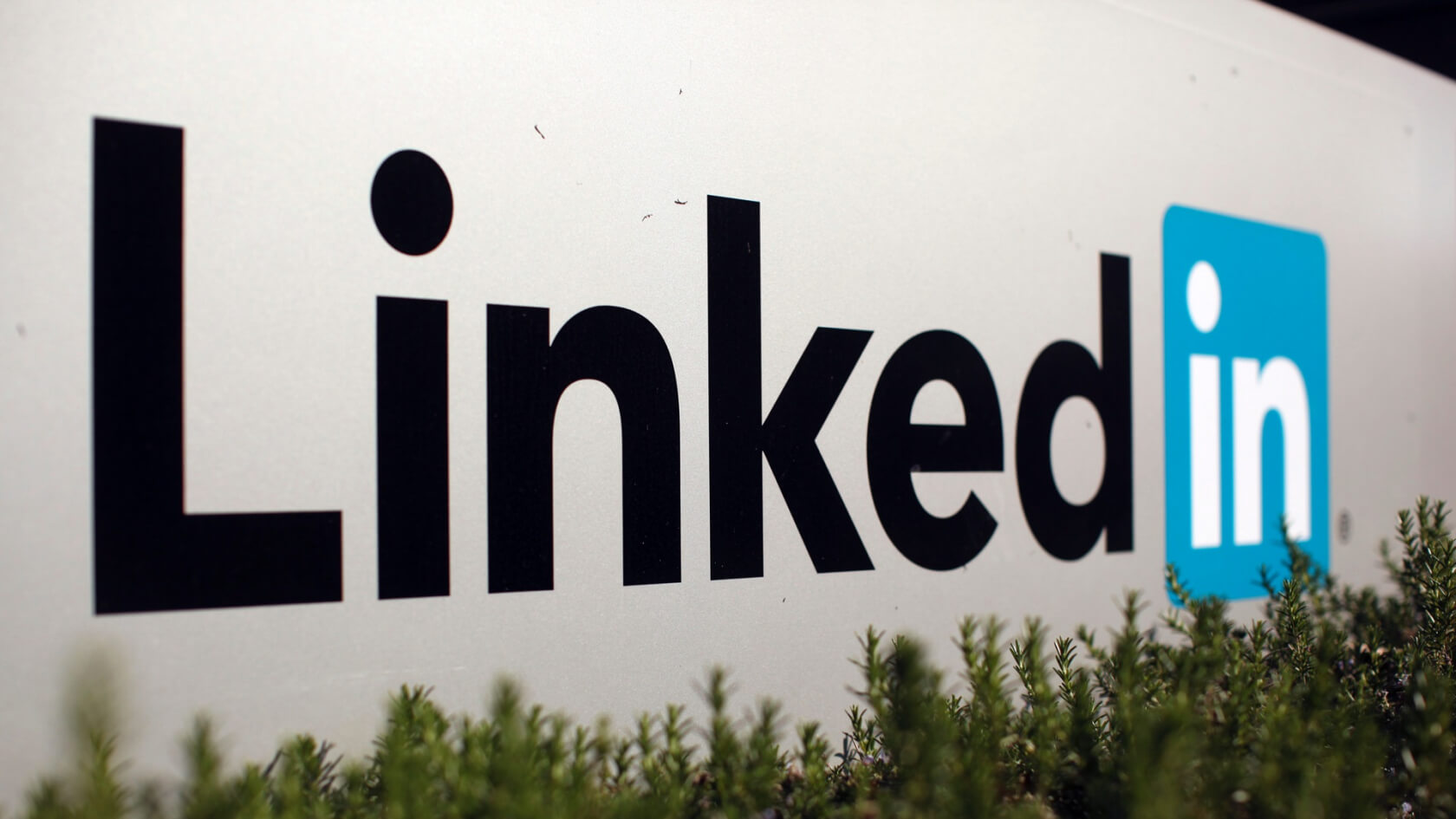 Judge rules against LinkedIn in legal fight over its members' public data