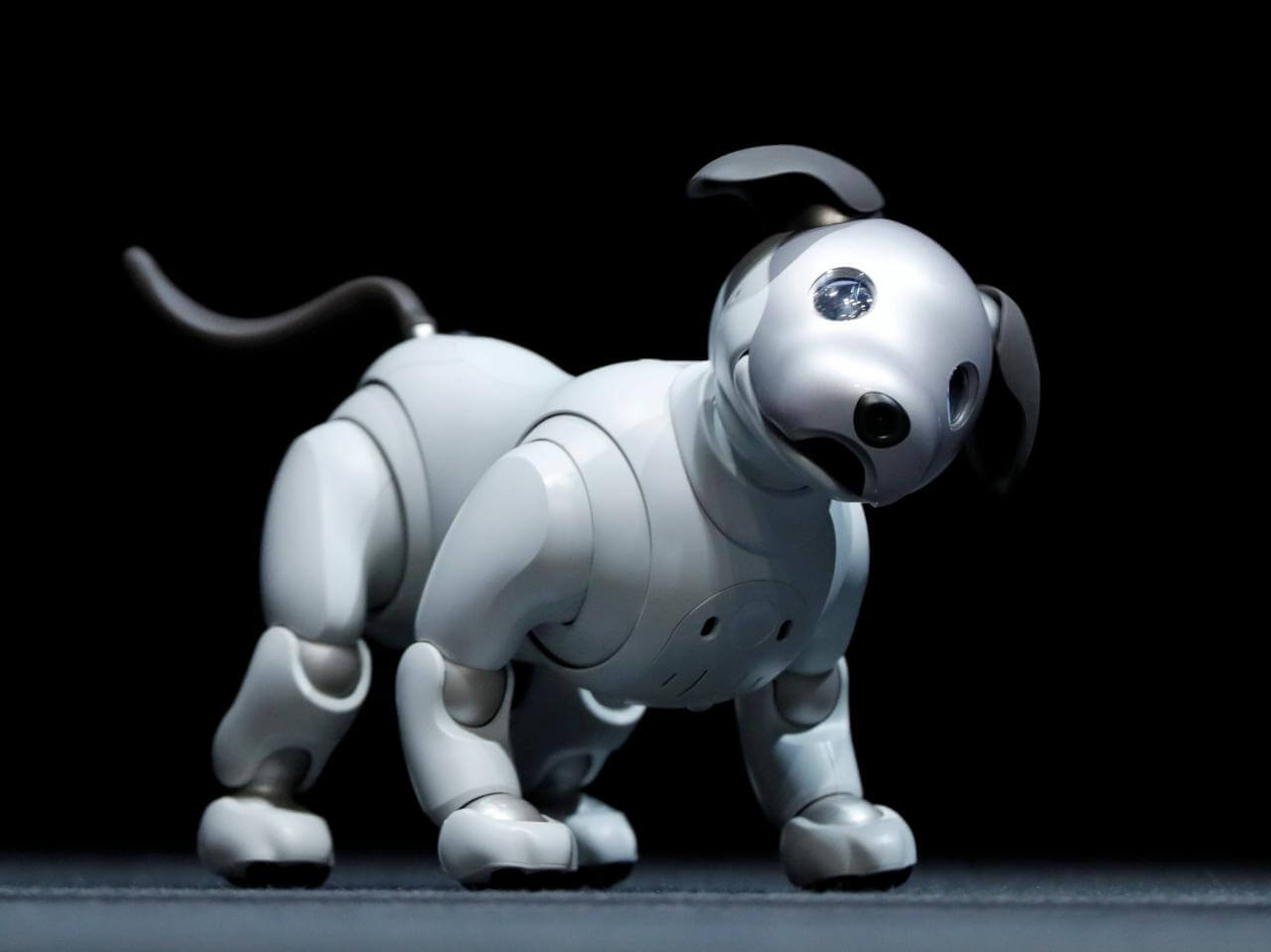 Top Dog Toy Manufacturers