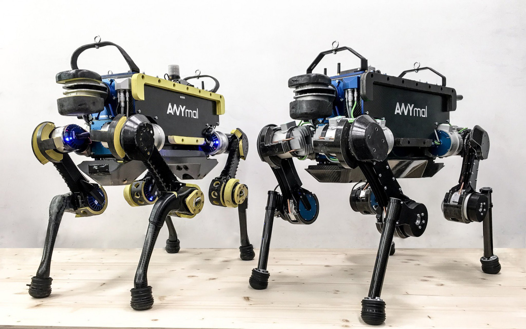 Designing Your Own House This Robot Dog Can Dance To Any Music Using Ai Techspot