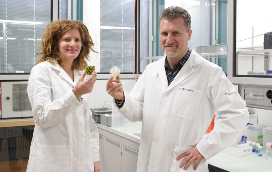 Researchers develop method that prevents water from freezing