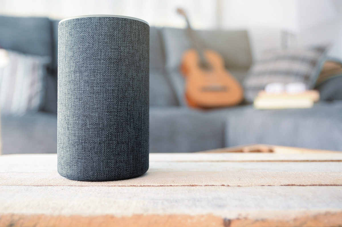 Digital assistants and smart speakers face many of the same issues as the early Internet