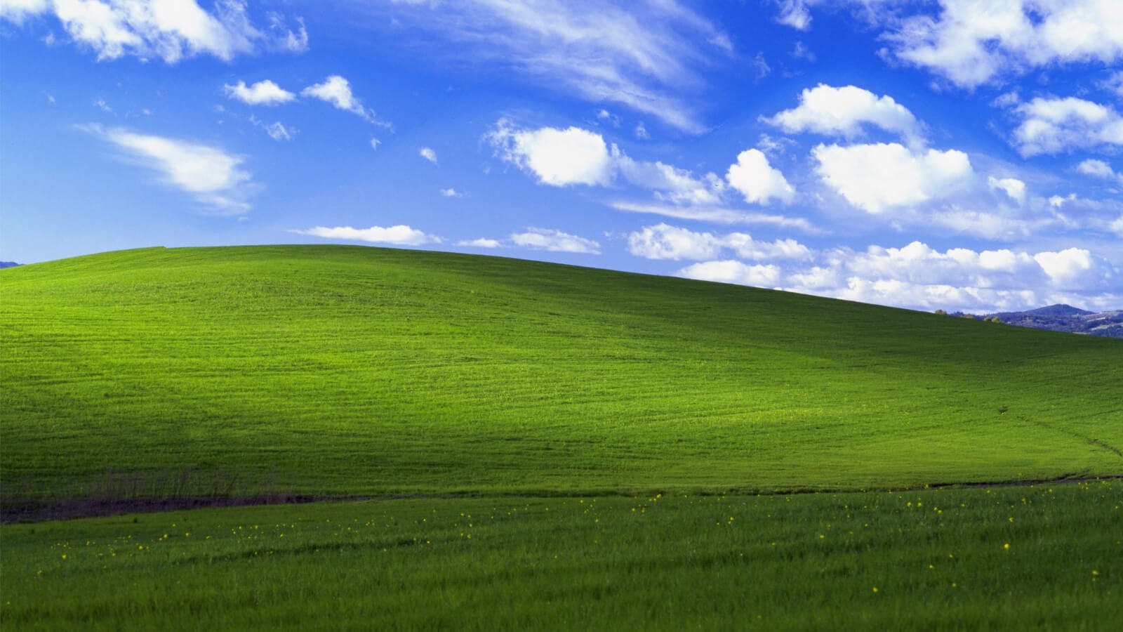 Microsoft patches major vulnerability in Windows 7 and XP to