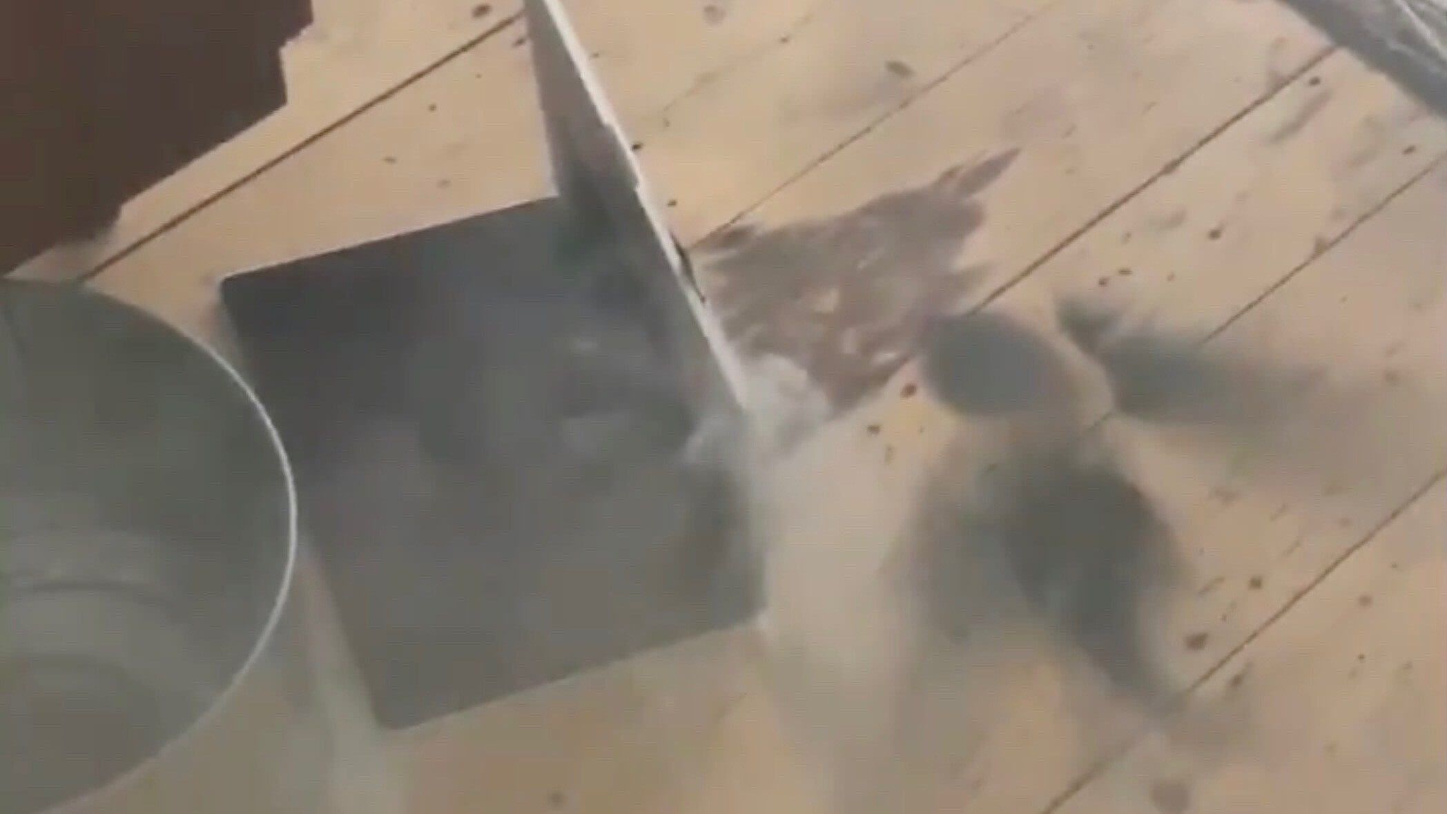 Watch a MacBook Pro pumping out smoke after it exploded during