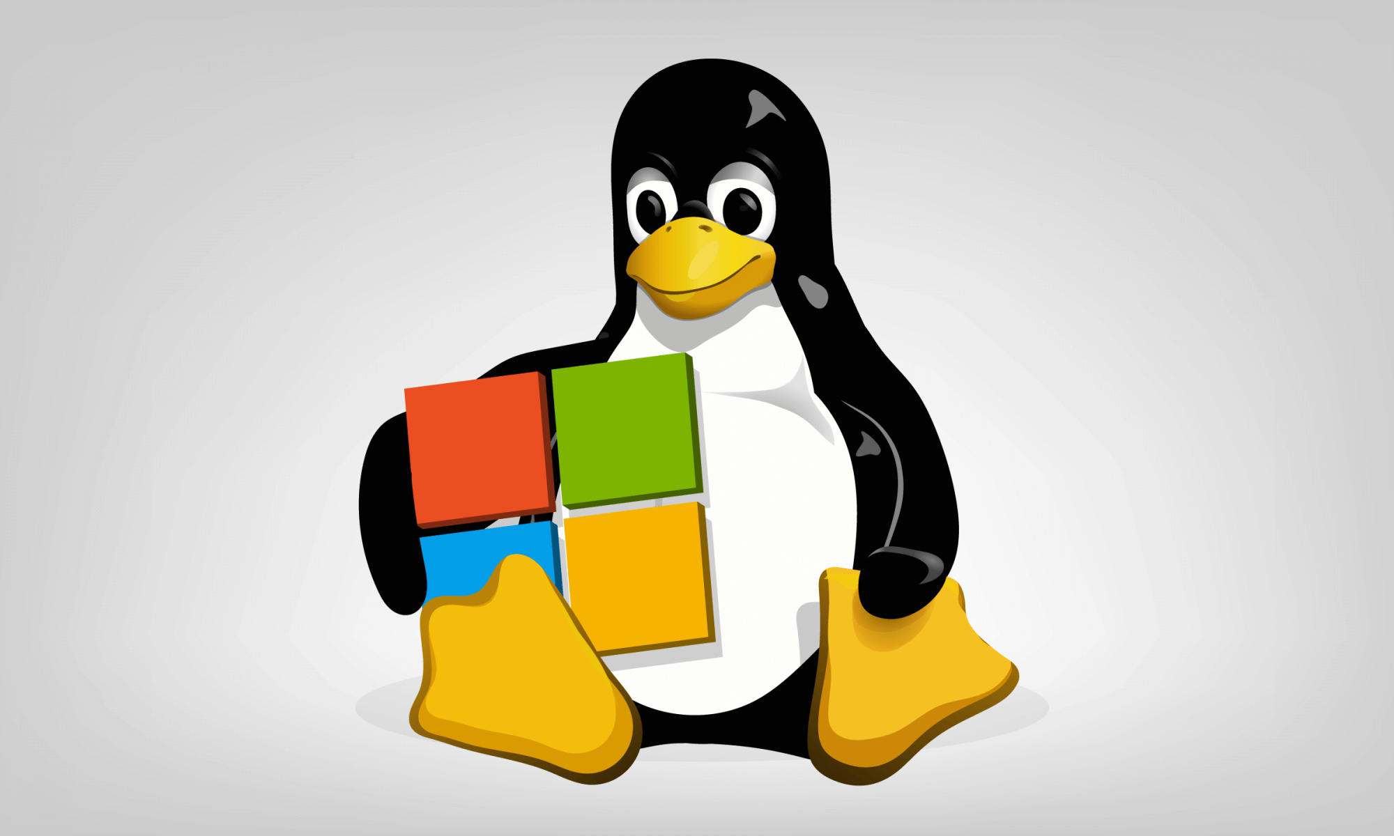 Microsoft is seeking to join Linux private security board
