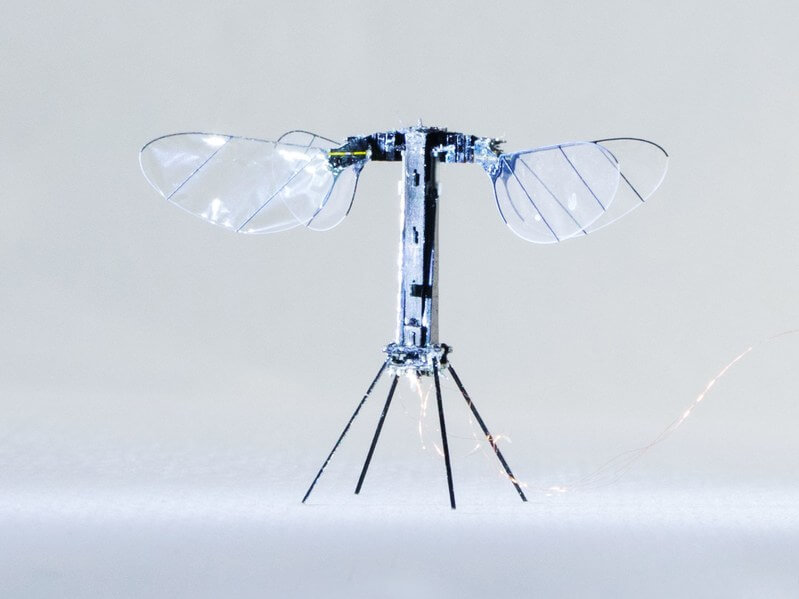 Harvard's Robobee can now fly untethered
