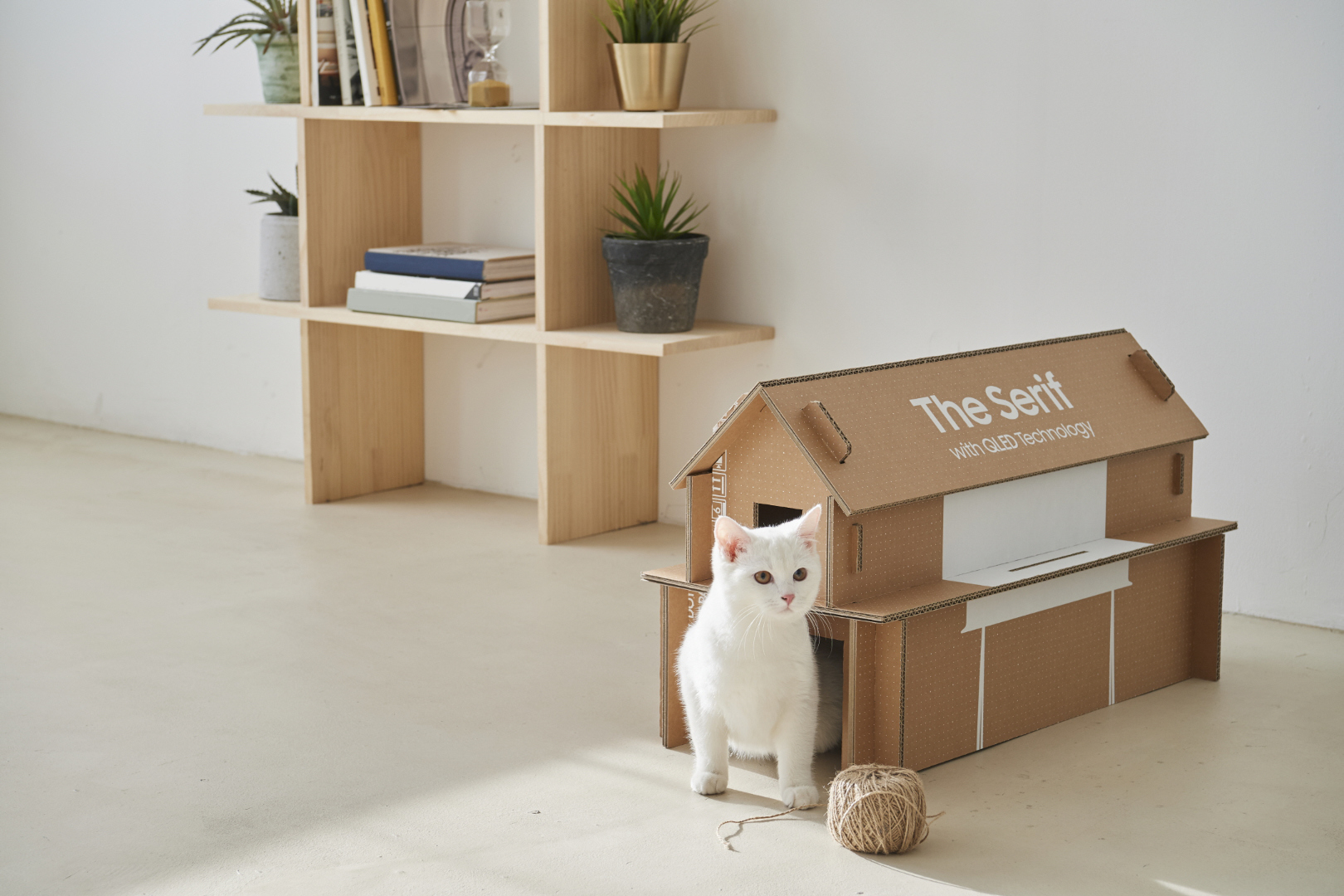 Samsung Lifestyle TVs to come in eco-friendly boxes that can be reused to make pet houses