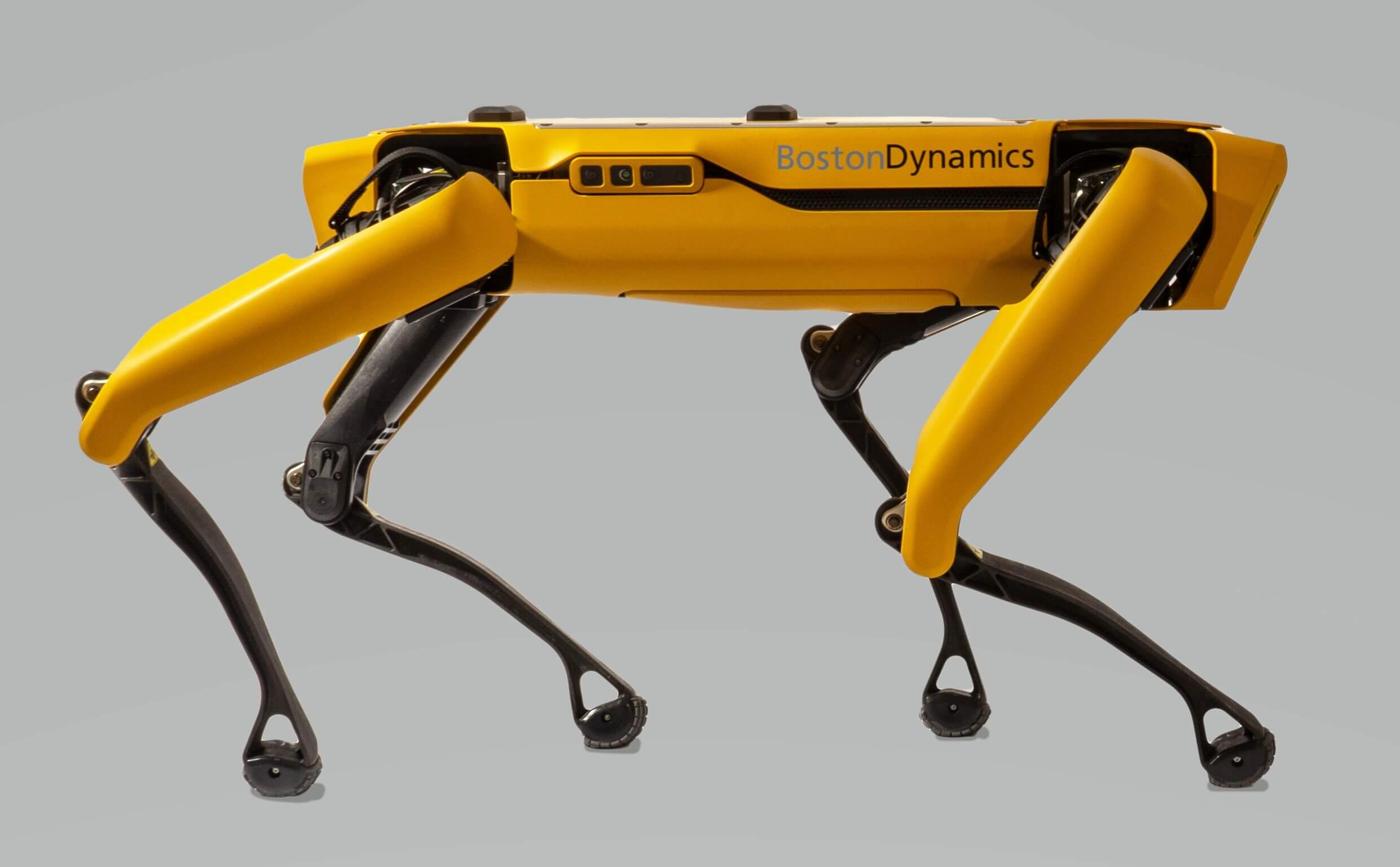 Boston Dynamics' Spot robot is now available to own