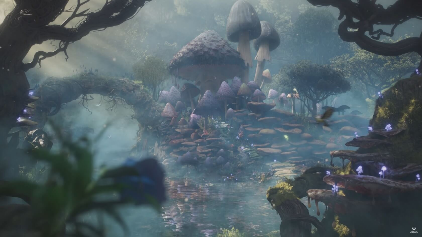 Microsoft reveals a'new beginning' for the Fable franchise 1