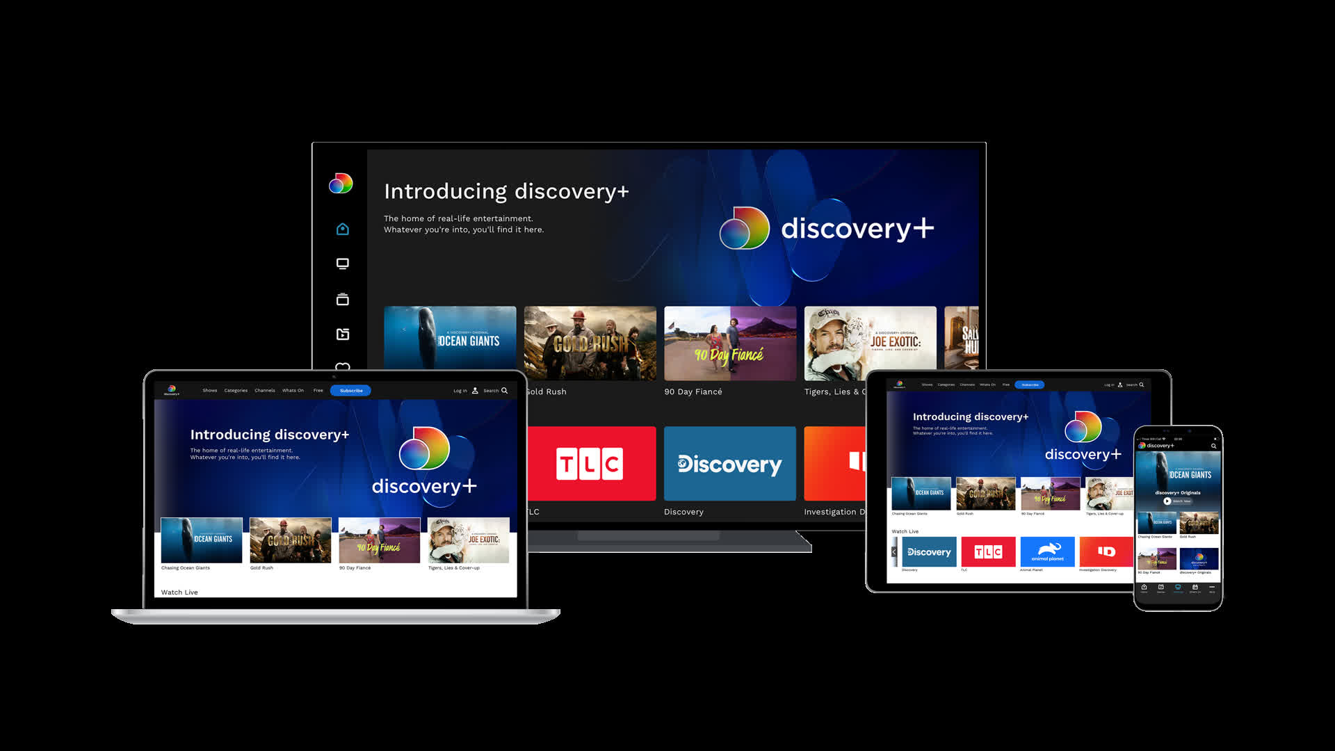 Discovery+ streaming service to launch in January, starts at $4.99 per month
