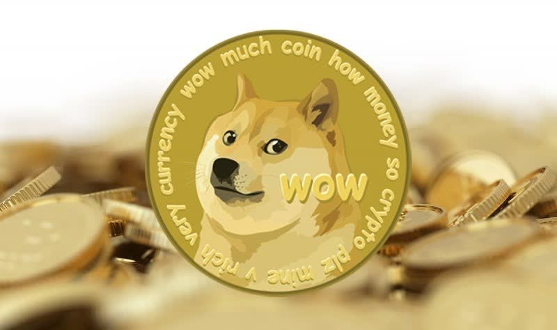 Redditors rally as Dogecoin halves in value following a sevenfold surge last week thumbnail