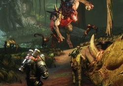 Evolve Benchmarked: Graphics & CPU Performance