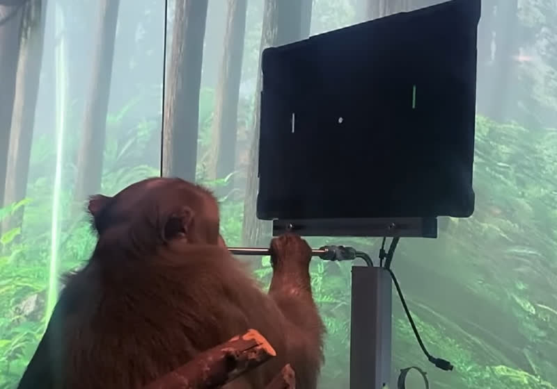Elon Musk's Neuralink releases video of monkey playing Pong with its mind